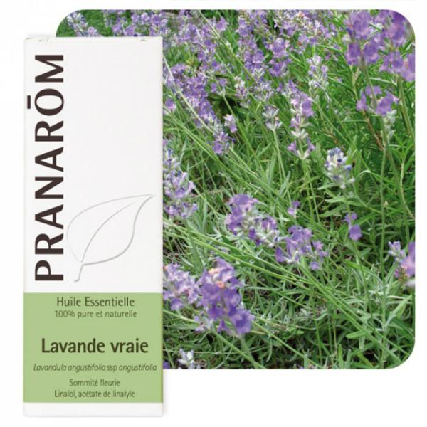 Lavanda (Lavandula angustifolia) - Eterično ulje