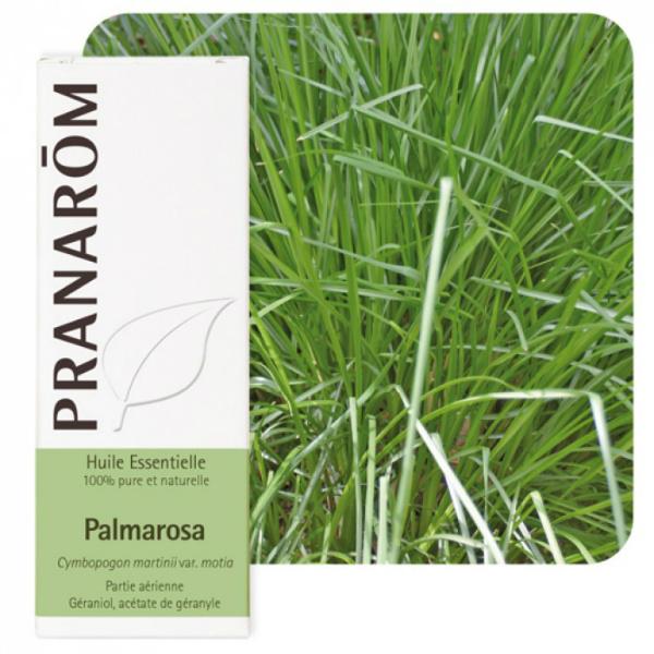 Palmarosa - Eterično ulje